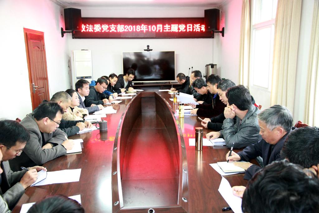 县委政法委实体化党建工作